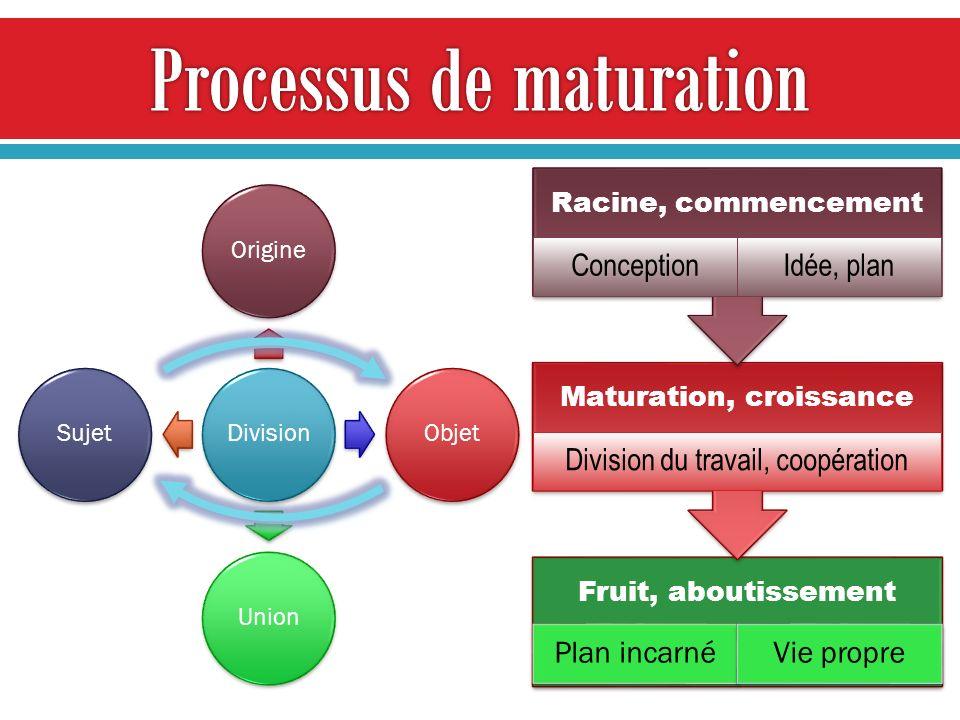 Processus de maturation
