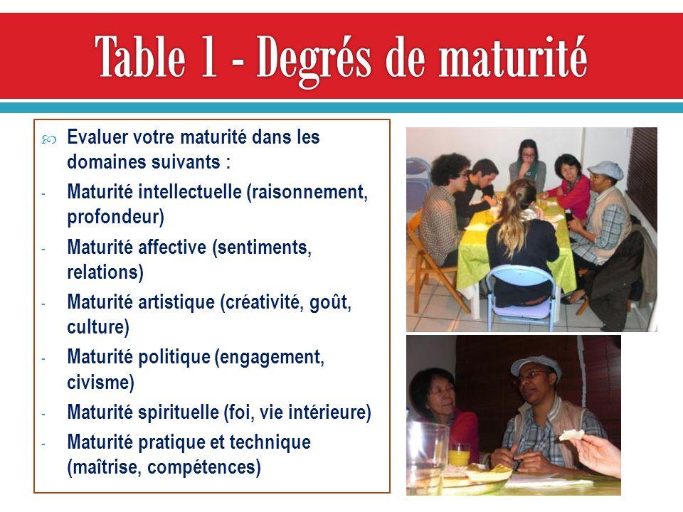 Table 1 - Degrés de maturité