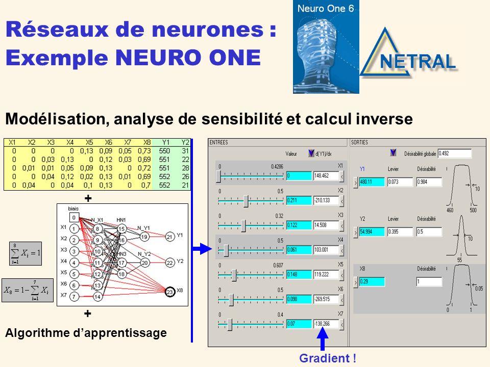 Réseaux de neurones : Exemple NEURO ONE