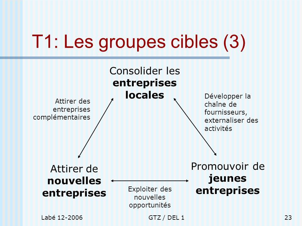 T1: Les groupes cibles (3)