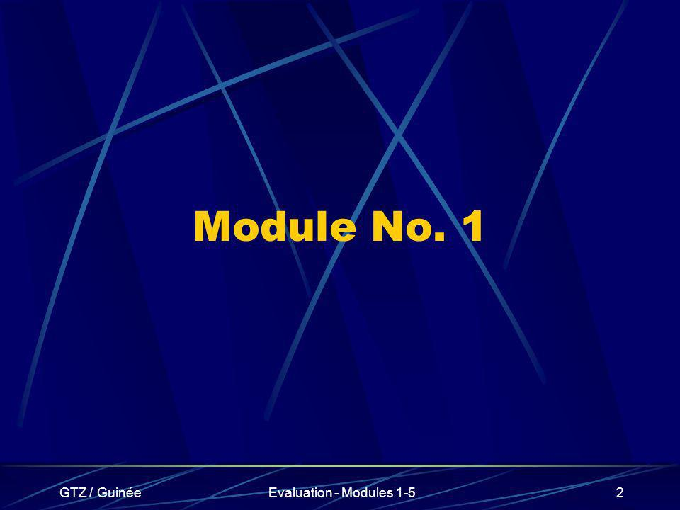 Module No. 1 GTZ / Guinée Evaluation - Modules 1-5