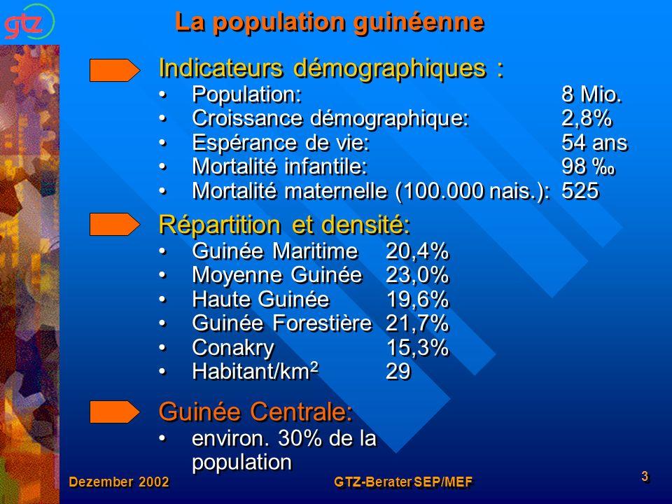 La population guinéenne