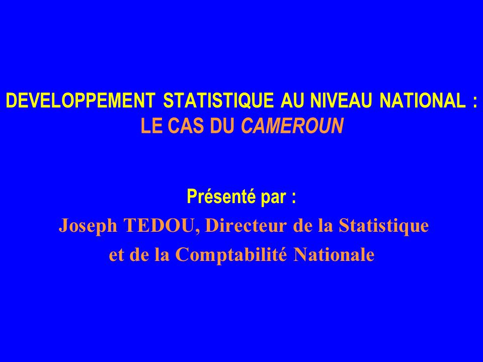 DEVELOPPEMENT STATISTIQUE AU NIVEAU NATIONAL : LE CAS DU CAMEROUN