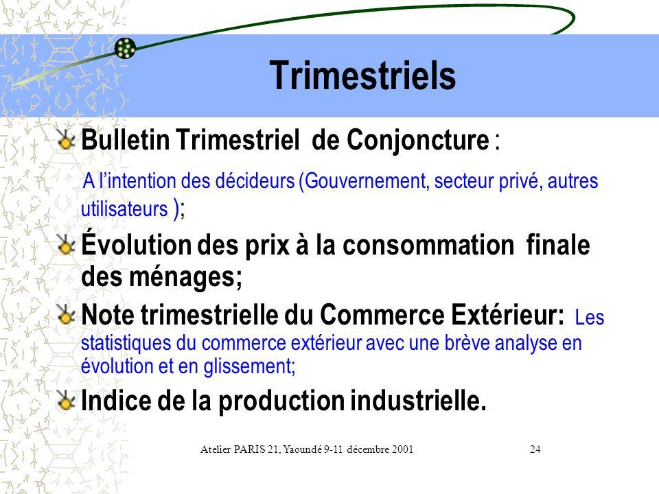 Atelier PARIS 21, Yaoundé 9-11 décembre 2001 24