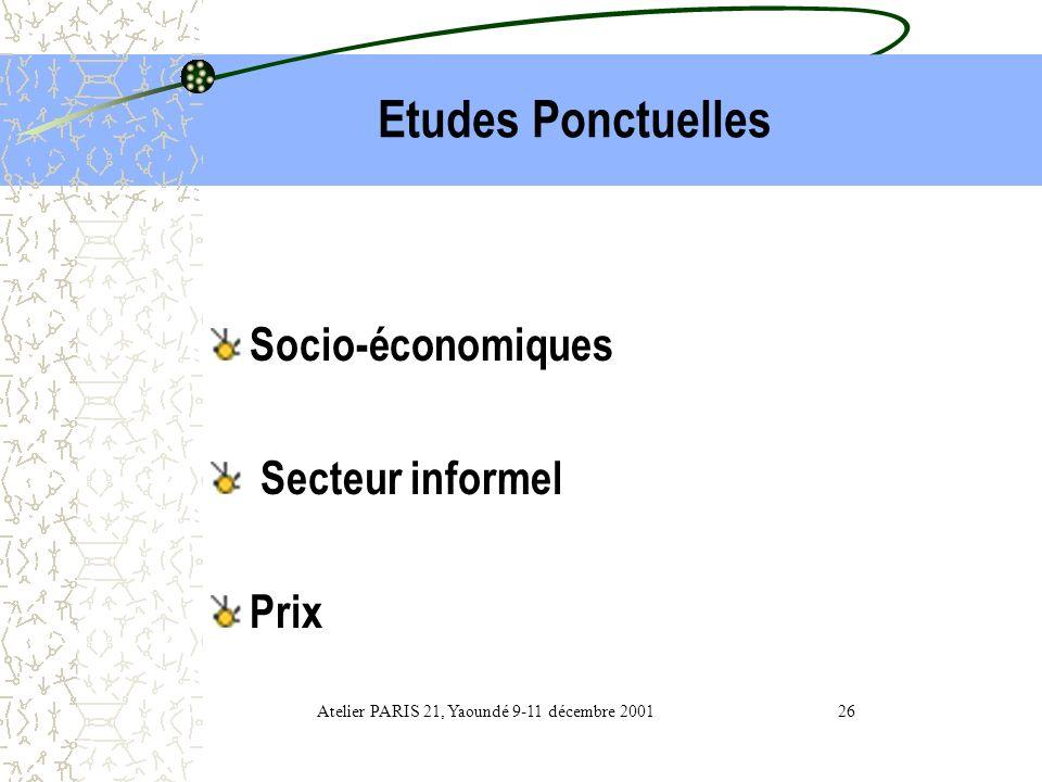 Atelier PARIS 21, Yaoundé 9-11 décembre 2001 26