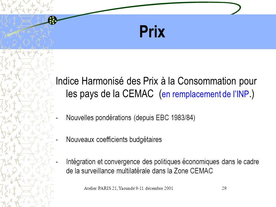 Atelier PARIS 21, Yaoundé 9-11 décembre 2001 29