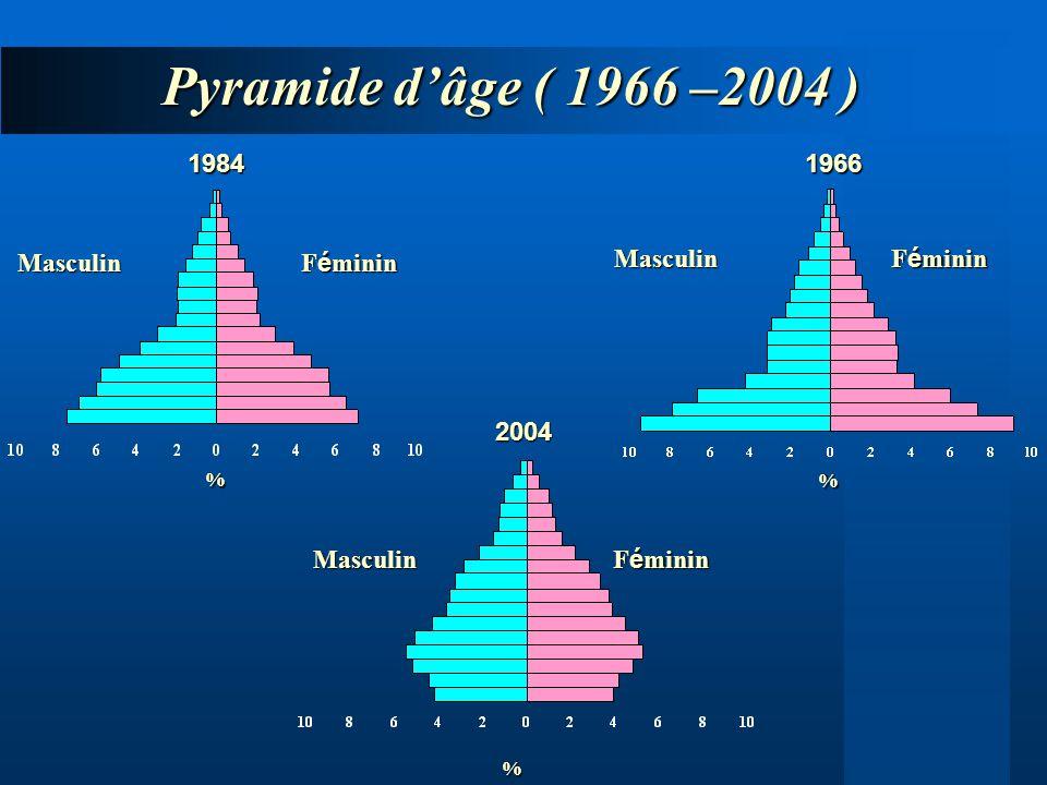 Pyramide d'âge ( 1966 –2004 ) 1984 1966 Féminin Masculin Féminin
