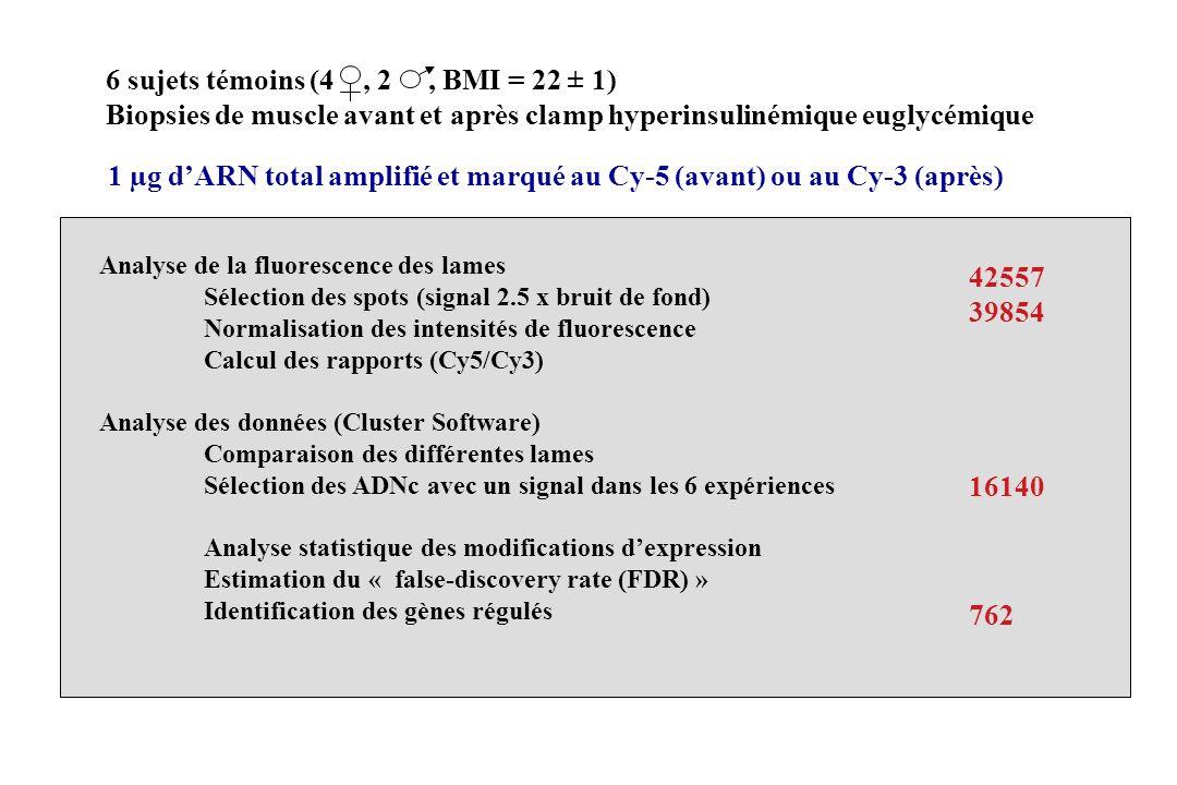 6 sujets témoins (4 , 2 , BMI = 22 ± 1)