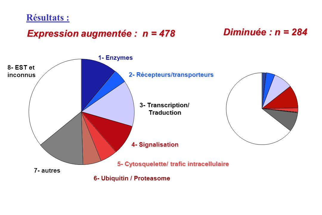 Expression augmentée : n = 478 Diminuée : n = 284