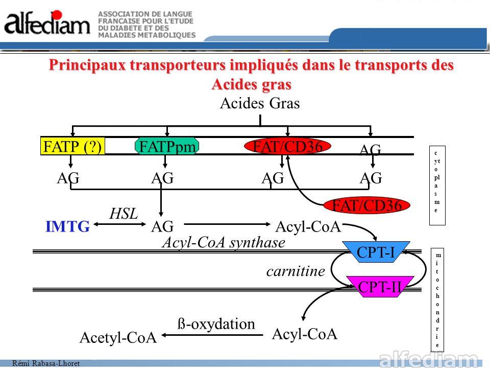 Principaux transporteurs impliqués dans le transports des Acides gras