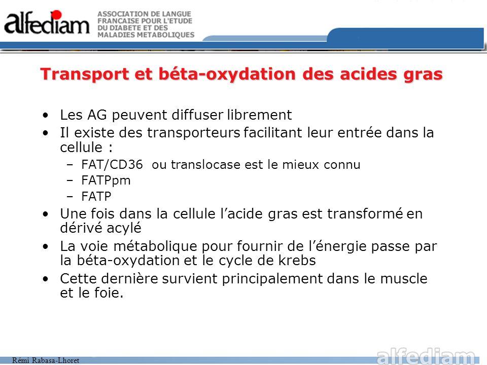 Transport et béta-oxydation des acides gras
