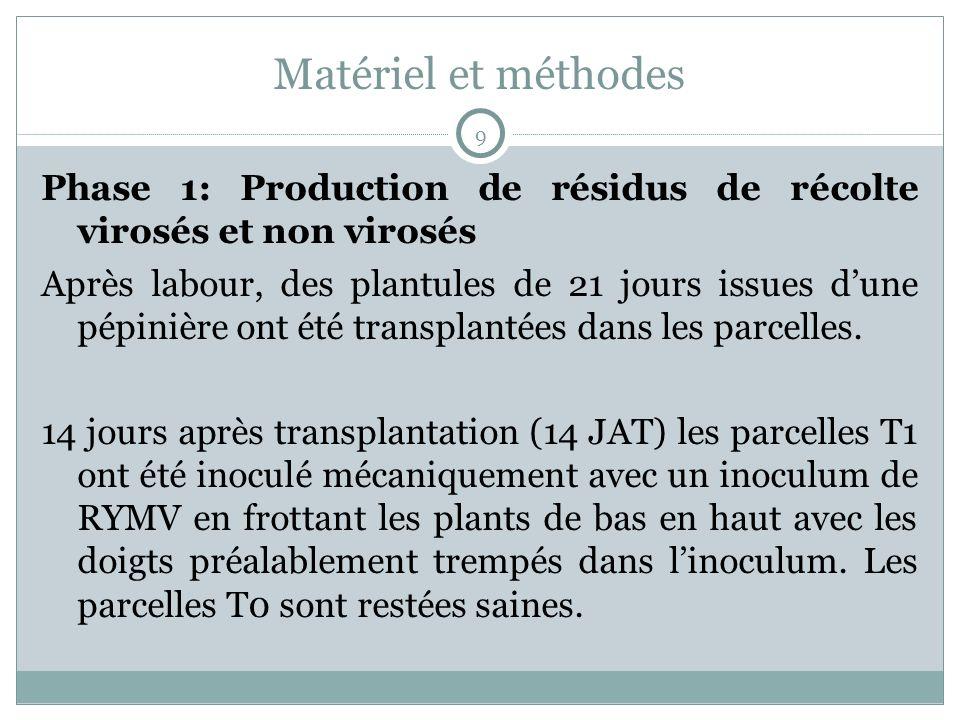 Matériel et méthodes 9. Phase 1: Production de résidus de récolte virosés et non virosés.
