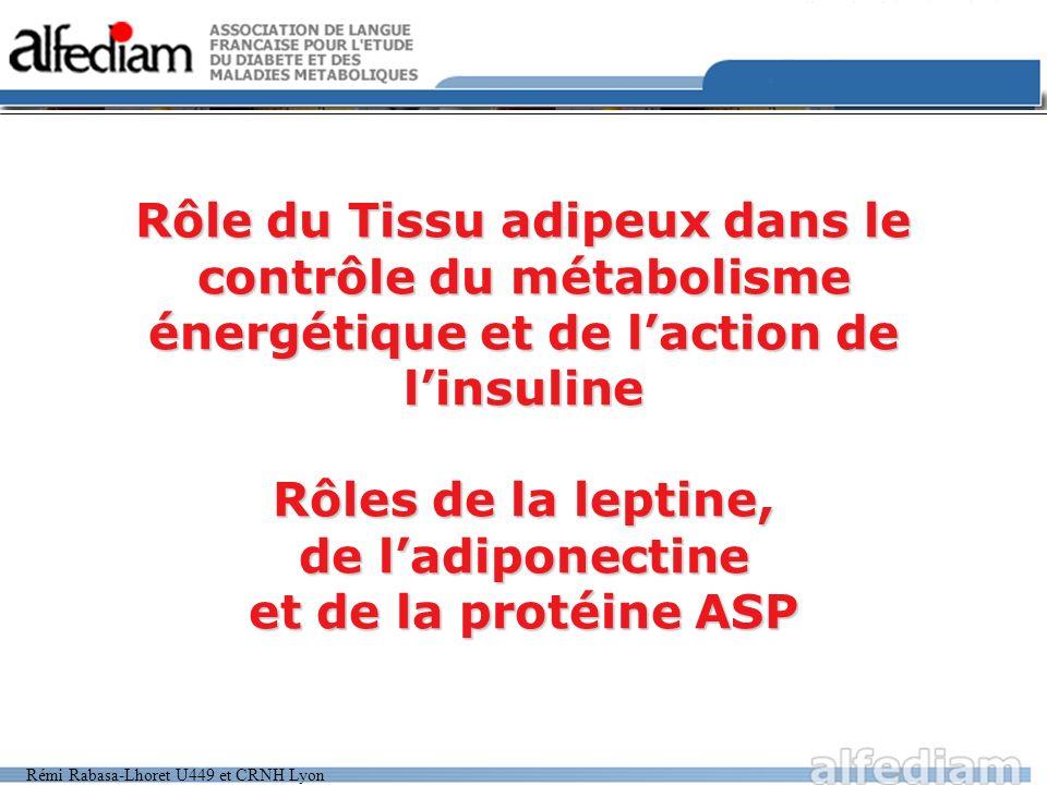Rôle du Tissu adipeux dans le contrôle du métabolisme énergétique et de l'action de l'insuline Rôles de la leptine, de l'adiponectine et de la protéine ASP