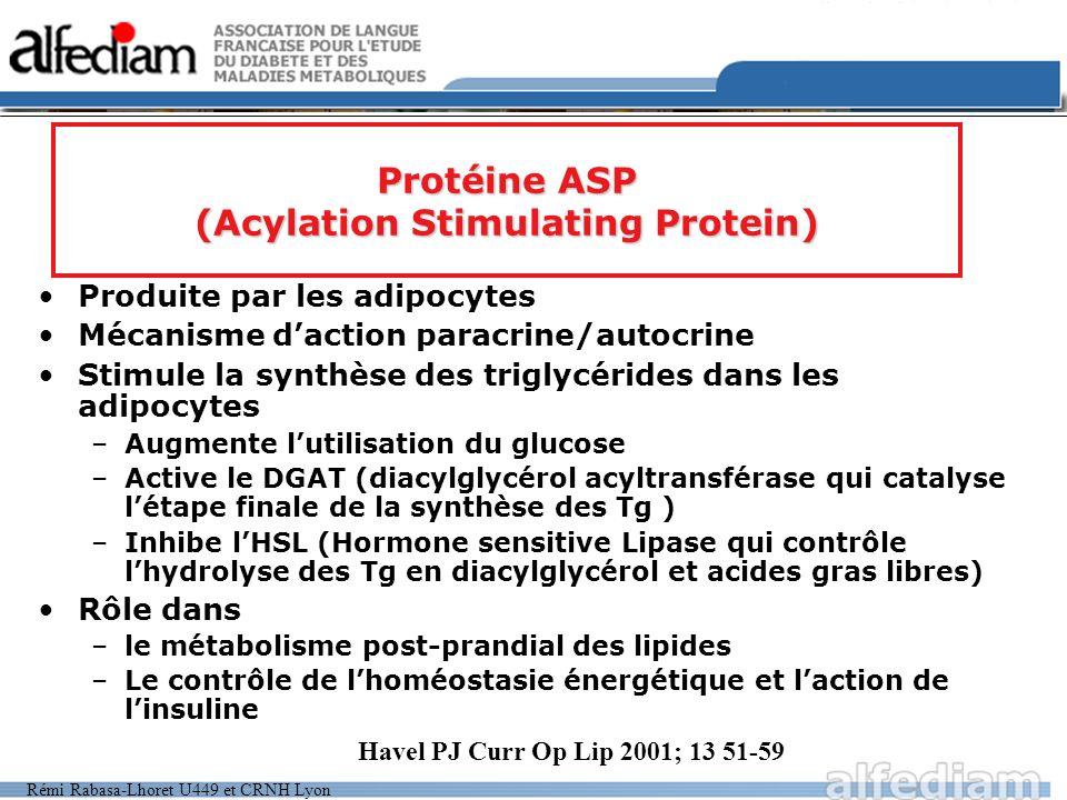 Protéine ASP (Acylation Stimulating Protein)