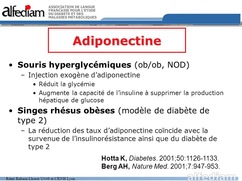 Adiponectine Souris hyperglycémiques (ob/ob, NOD)