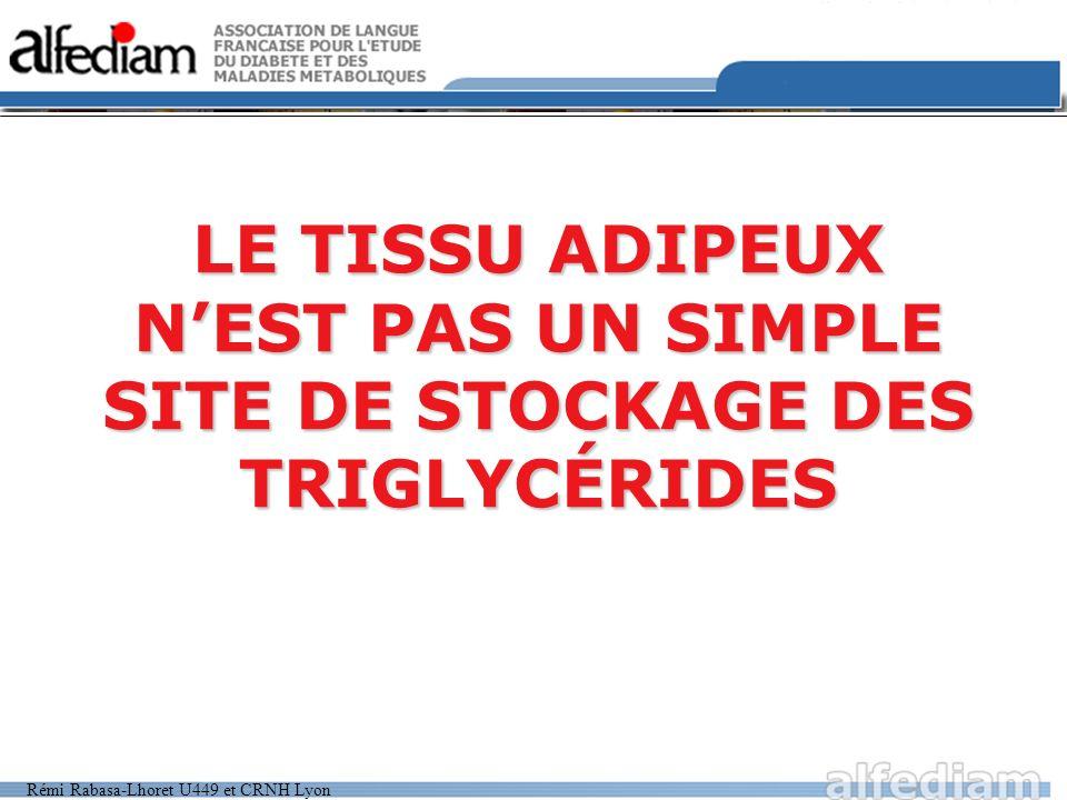LE TISSU ADIPEUX N'EST PAS UN SIMPLE SITE DE STOCKAGE DES TRIGLYCÉRIDES