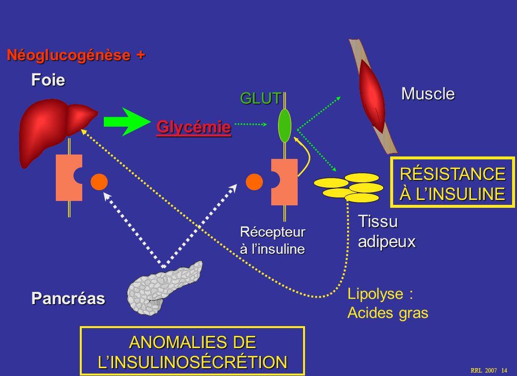 Foie Glycémie Pancréas