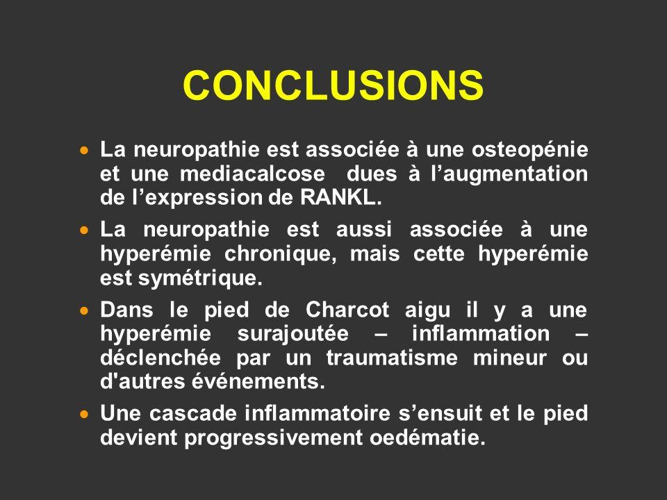 CONCLUSIONS La neuropathie est associée à une osteopénie et une mediacalcose dues à l'augmentation de l'expression de RANKL.