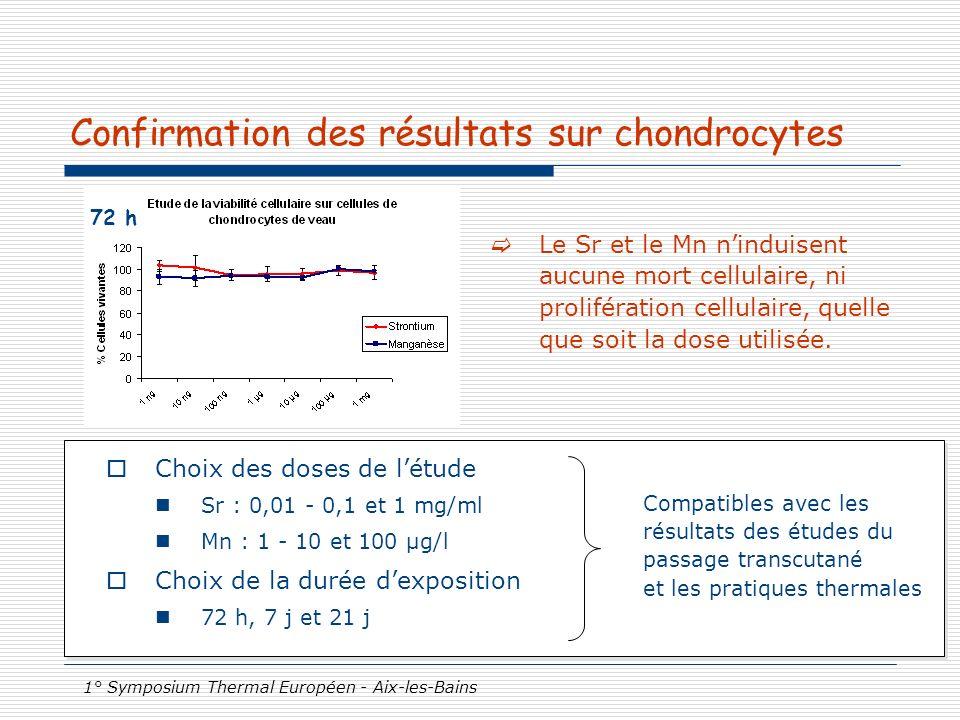 Confirmation des résultats sur chondrocytes