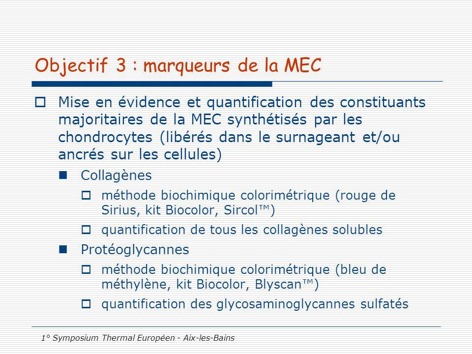 Objectif 3 : marqueurs de la MEC