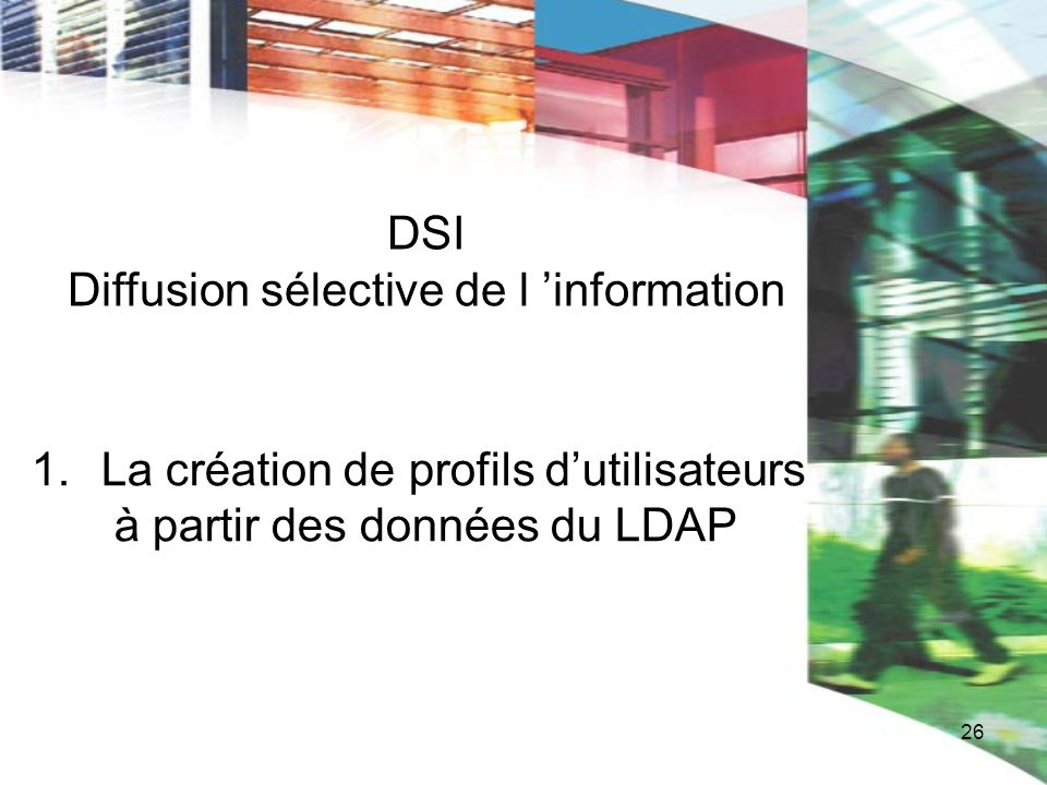 DSI Diffusion sélective de l 'information