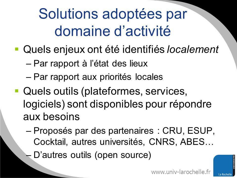 Solutions adoptées par domaine d'activité