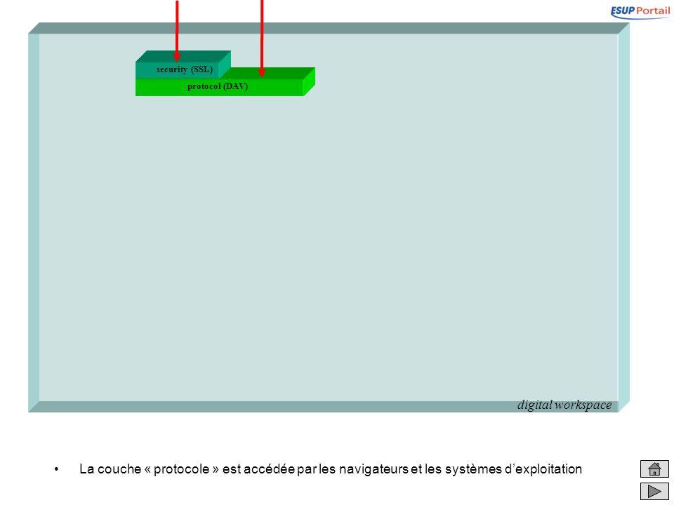 digital workspacesecurity (SSL) protocol (DAV) La couche « protocole » est accédée par les navigateurs et les systèmes d'exploitation.