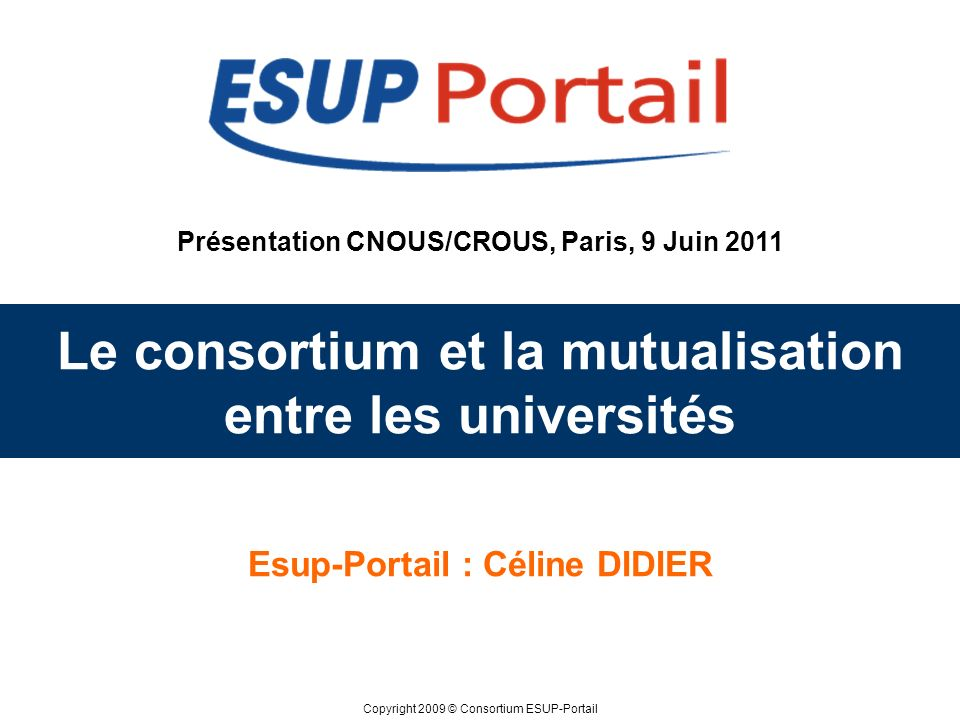 Le consortium et la mutualisation entre les universités