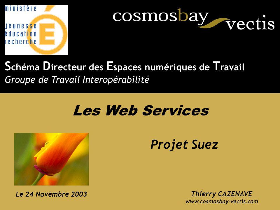 Les Web Services Schéma Directeur des Espaces numériques de Travail