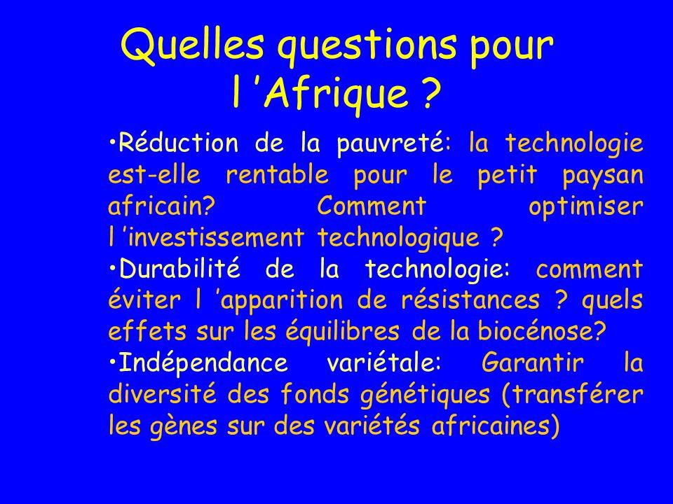 Quelles questions pour l 'Afrique