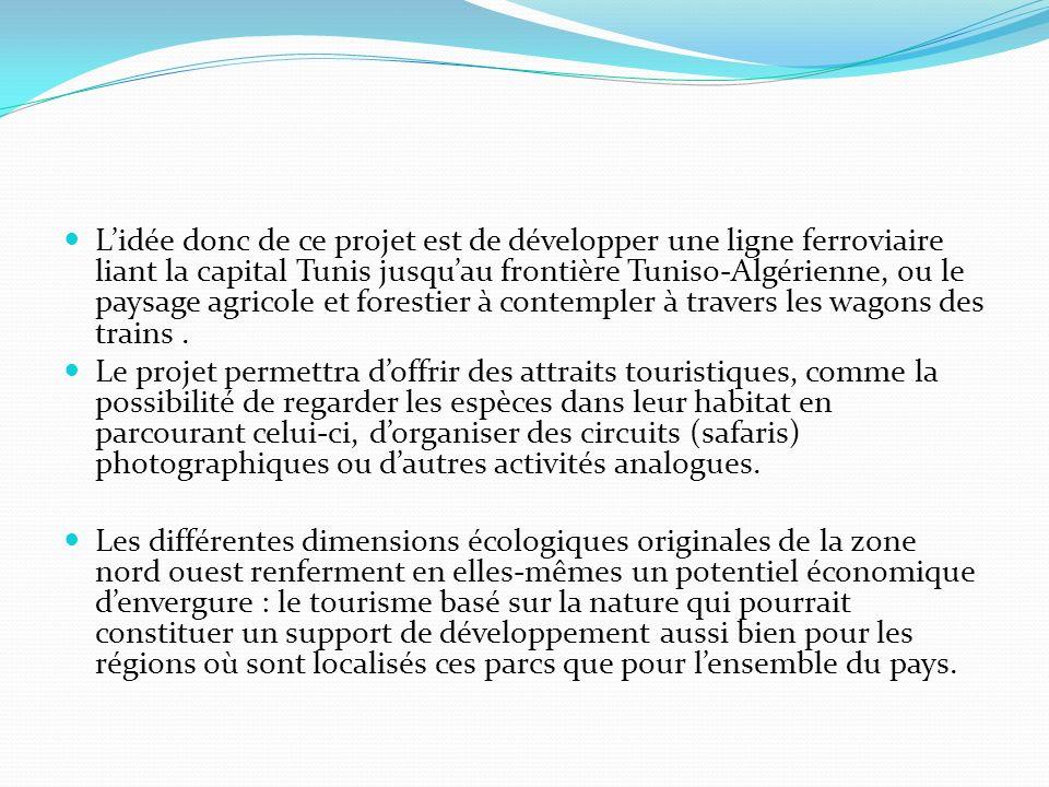 L'idée donc de ce projet est de développer une ligne ferroviaire liant la capital Tunis jusqu'au frontière Tuniso-Algérienne, ou le paysage agricole et forestier à contempler à travers les wagons des trains .