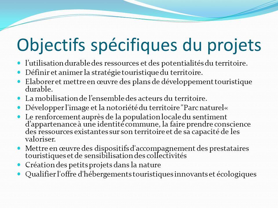 Objectifs spécifiques du projets