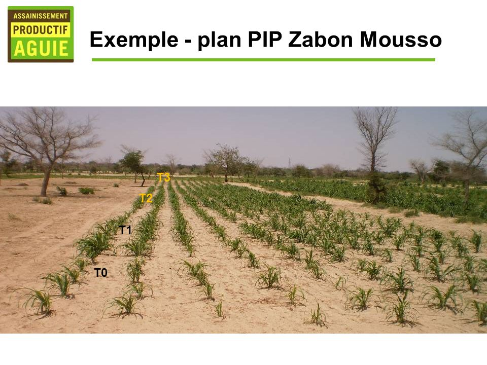Exemple - plan PIP Zabon Mousso