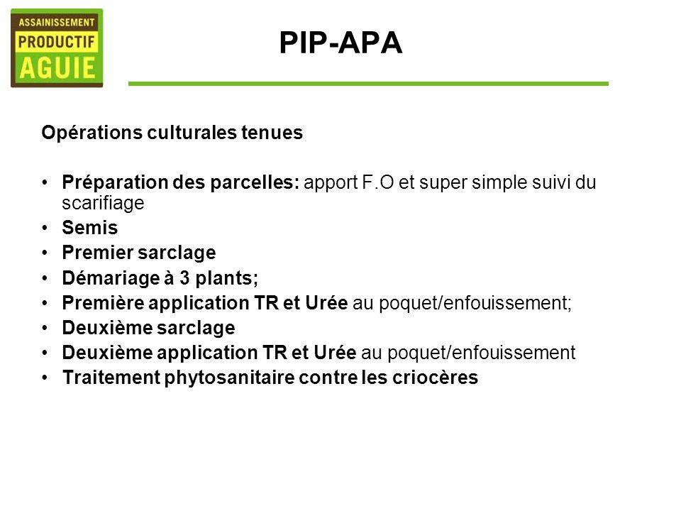 PIP-APA Opérations culturales tenues