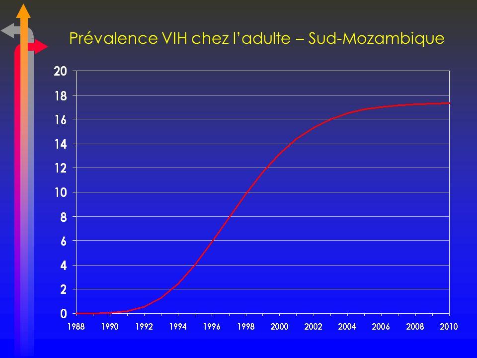 Prévalence VIH chez l'adulte – Sud-Mozambique
