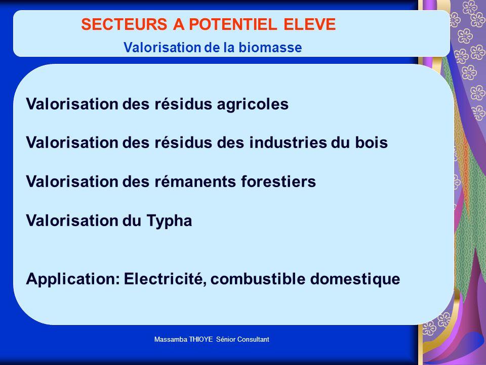 SECTEURS A POTENTIEL ELEVE Valorisation de la biomasse