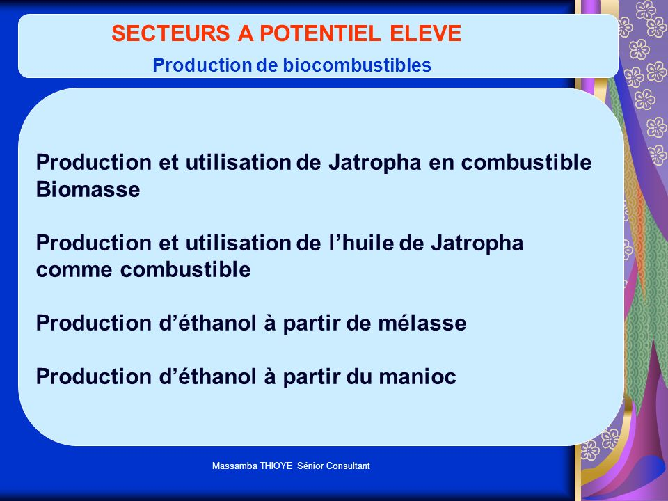 SECTEURS A POTENTIEL ELEVE Production de biocombustibles