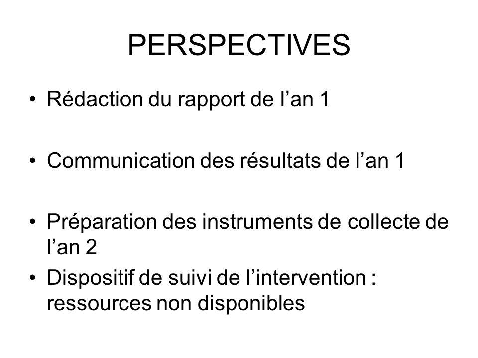 PERSPECTIVES Rédaction du rapport de l'an 1