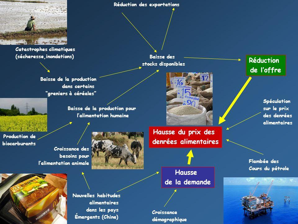 Baisse de la production pour l'alimentation humaine