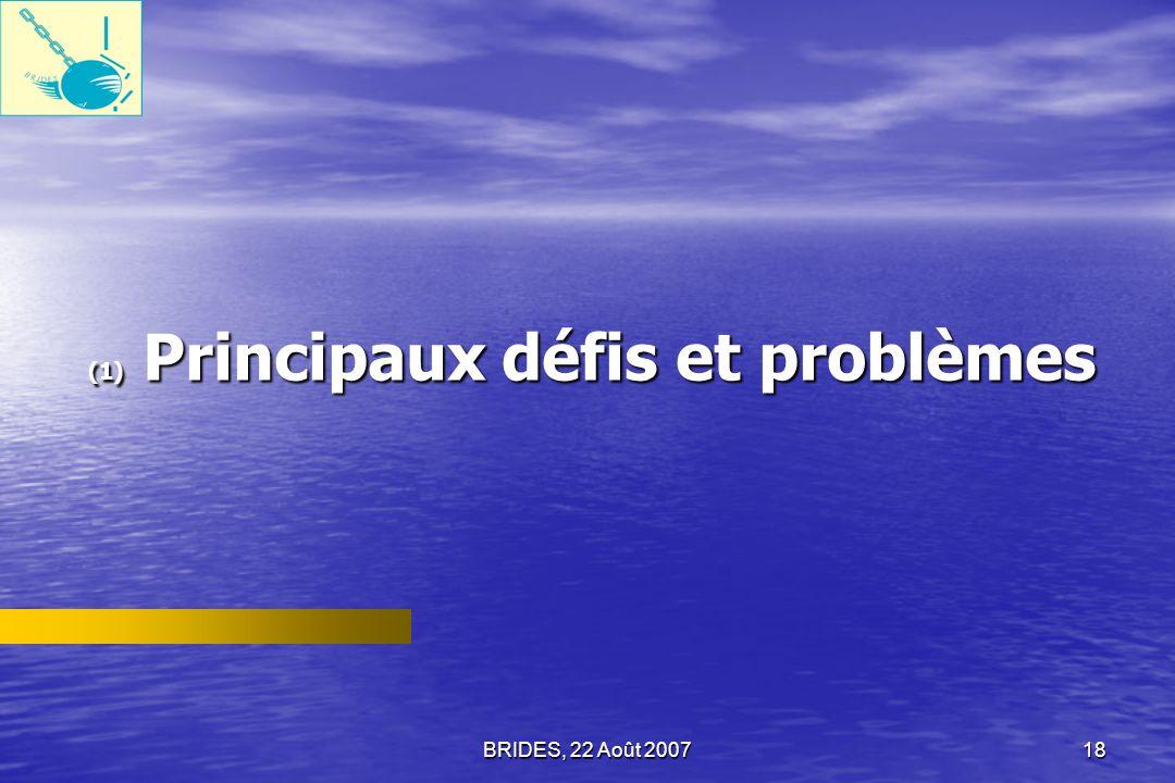 (1) Principaux défis et problèmes