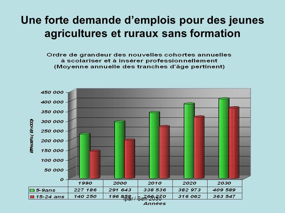 Une forte demande d'emplois pour des jeunes agricultures et ruraux sans formation