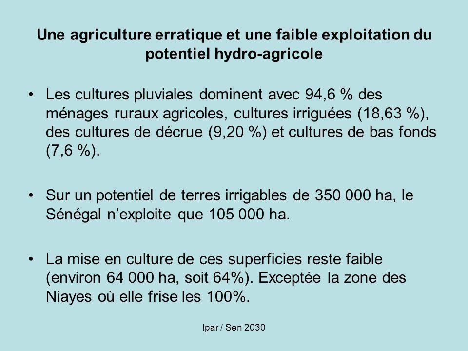 Une agriculture erratique et une faible exploitation du potentiel hydro-agricole
