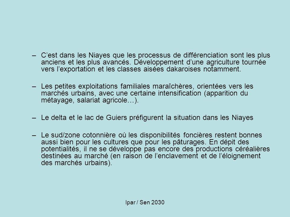 Le delta et le lac de Guiers préfigurent la situation dans les Niayes