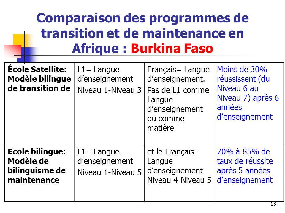 Comparaison des programmes de transition et de maintenance en Afrique : Burkina Faso