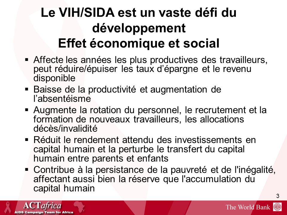 Le VIH/SIDA est un vaste défi du développement Effet économique et social
