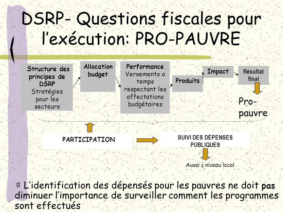 DSRP- Questions fiscales pour l'exécution: PRO-PAUVRE