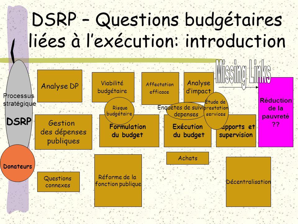 DSRP – Questions budgétaires liées à l'exécution: introduction