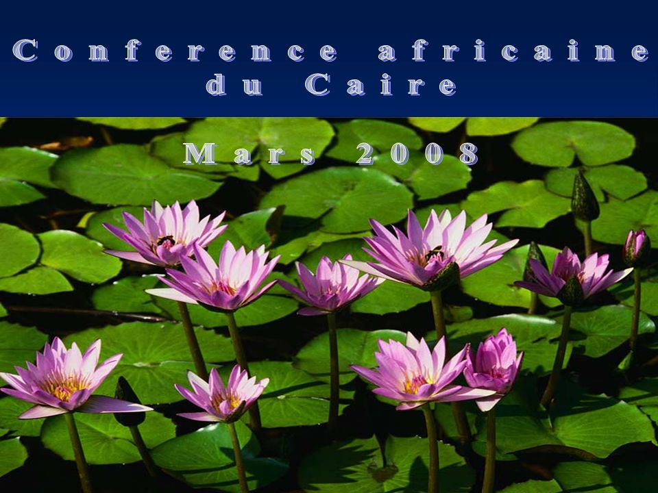 Conference africaine du Caire Mars 2008