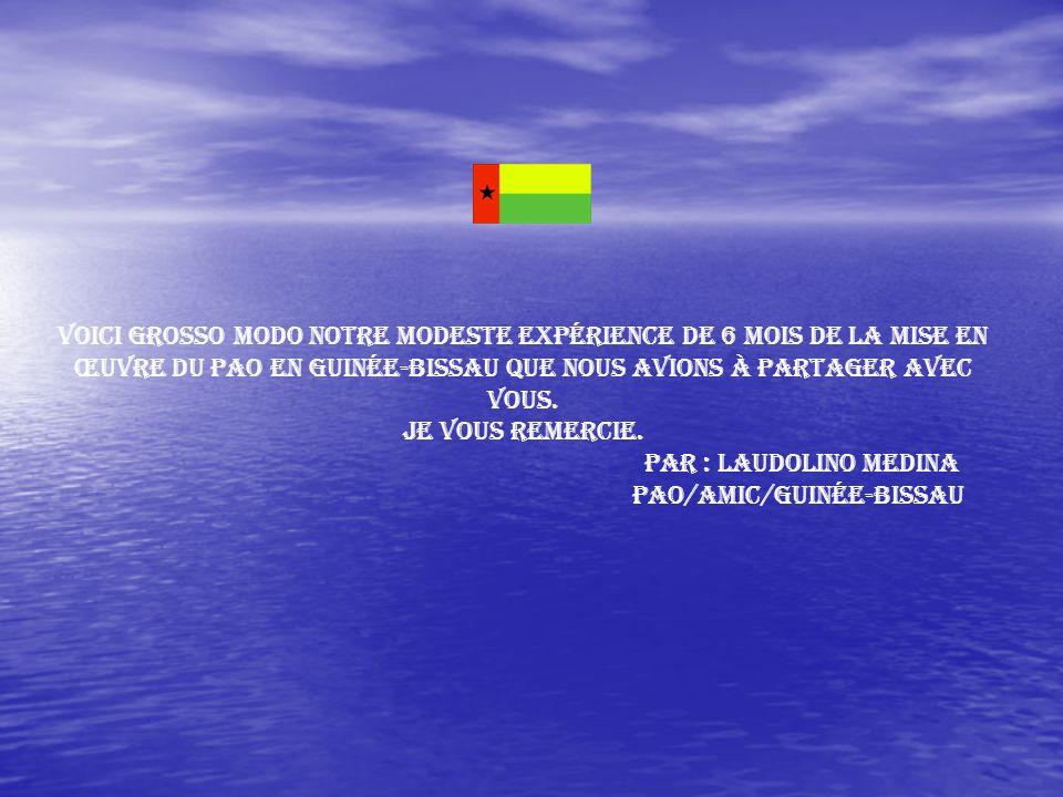 PAO/AMIC/Guinée-Bissau