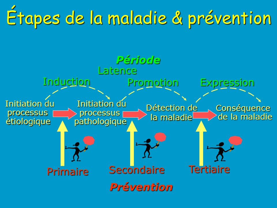 Étapes de la maladie & prévention